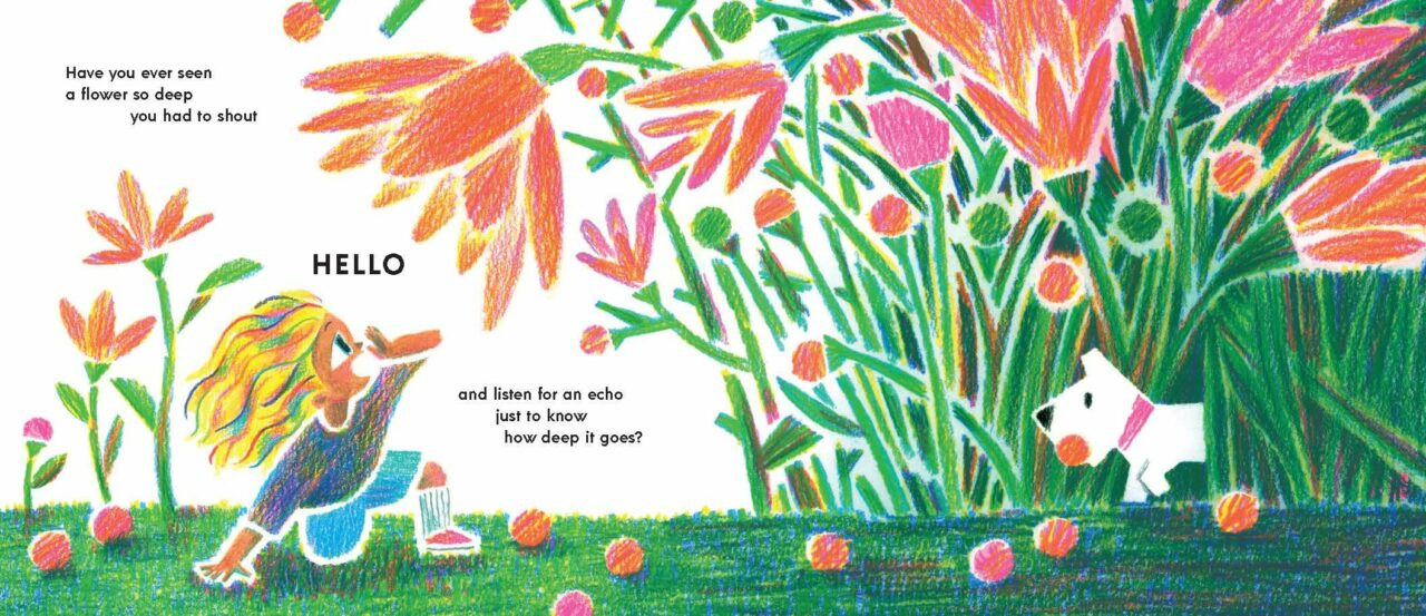 Children's Book Week 2021: Have You Ever Seen A Flower? by Shawn Harris -  Sincerely Stacie