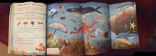 Wild Activity Book Ocean Page