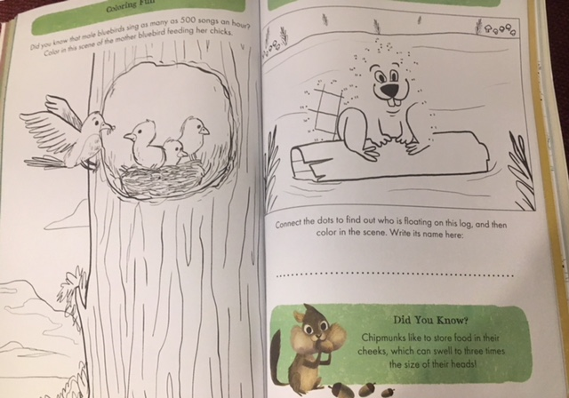 Wild Activity Book Coloring Page