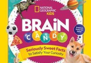 Brain-Candy