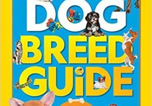 Dog-Breed-Guide