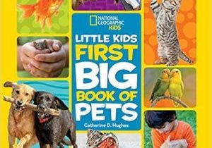 Little Kids First Big Book of Pets Book Cover