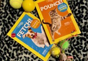 Pounce-Fetch