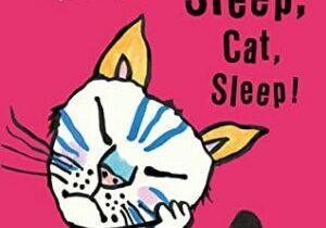 Sleep Cat Sleep
