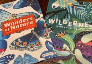 Wonders Wilderness